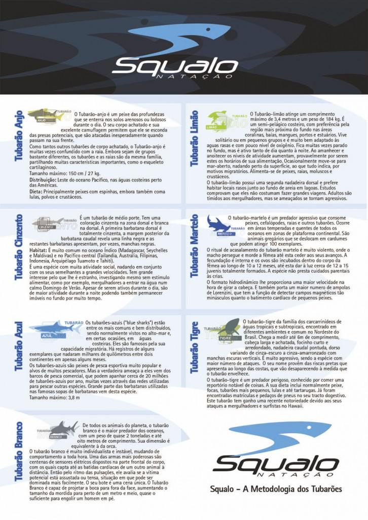 Squalo-Banner-tubarões